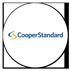cooper standard india